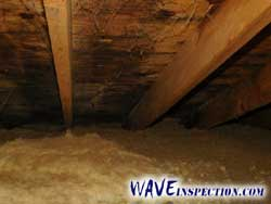 WAVE Home Inspector MA CT RI